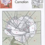 January's Carnation