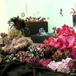 coral_reef_lg2